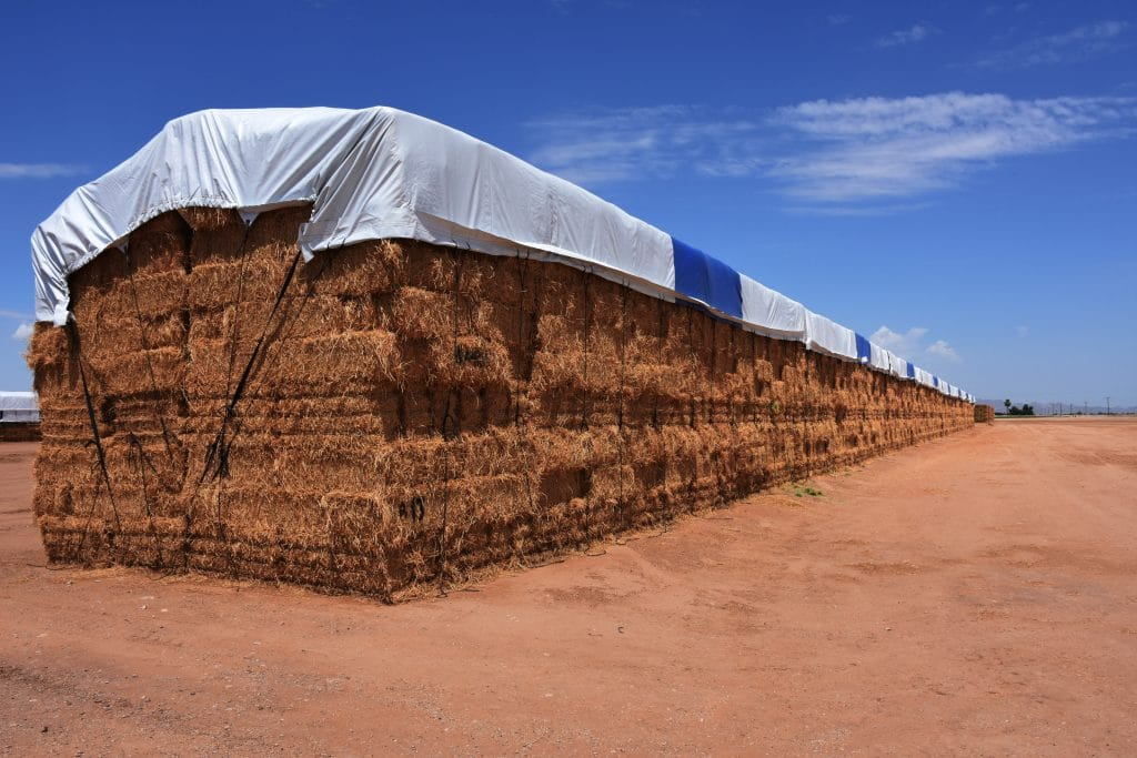 Square hay bales covered with large blue and white hay tarp